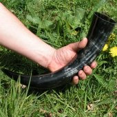 Drinking horn in 0.05 - 0.1 l